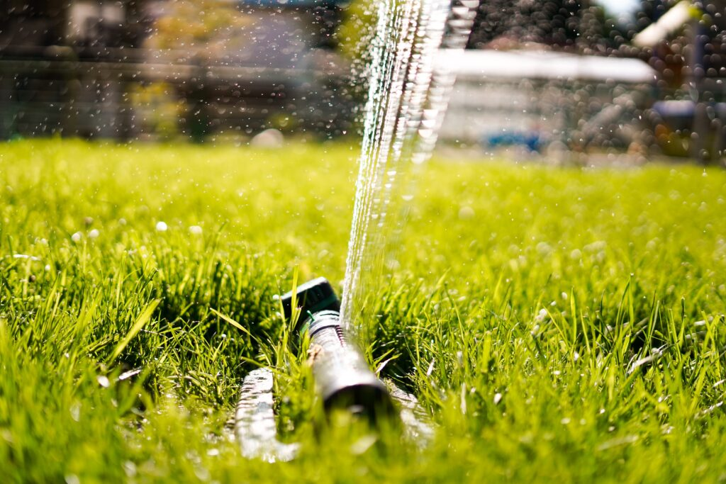 How to Find a Water Leak in Your Yard before It Causes Serious Damage